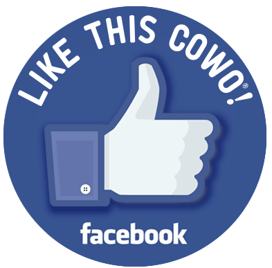 Pagina Facebook Coworking Cernusco